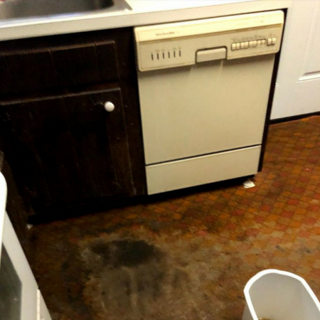 24 hour Emergency Water Damage Restoration Image 10