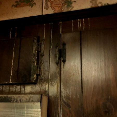 24 hour Emergency Water Damage Restoration Image 6